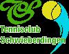 TC Schwieberdingen